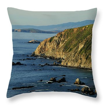 Tomales Point Throw Pillow