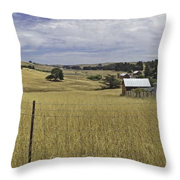Tomales Study Throw Pillow