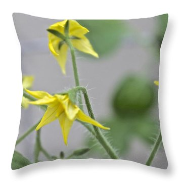Tomato Babies 1 Throw Pillow