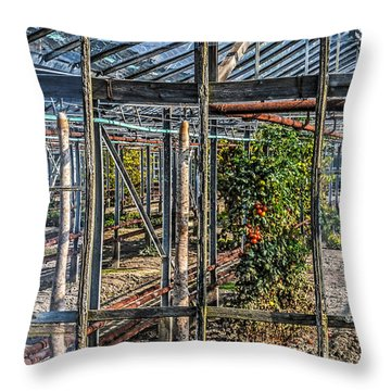 Tomatoes And Pumpkins Throw Pillow