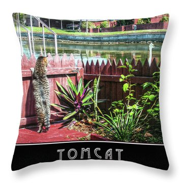 Throw Pillow featuring the photograph Tomcat Breakfast by Hanny Heim