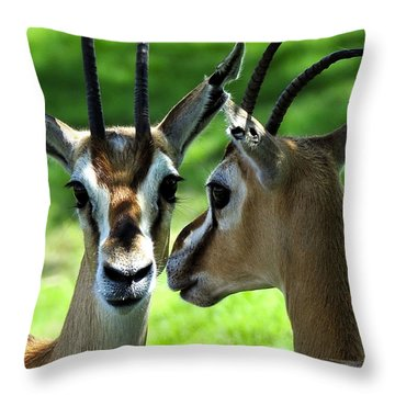 Tommy Talk Throw Pillow by David Lee Thompson