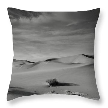 Tones Of Mesquite Throw Pillow