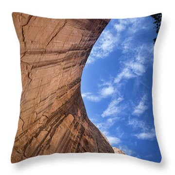 Tones Of Solitude Throw Pillow