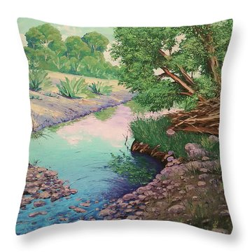 Tonto Creek Throw Pillow
