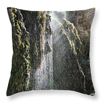 Tonto Waterfall Splash Throw Pillow