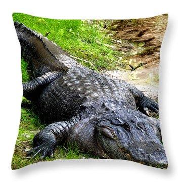 Too Close Throw Pillow