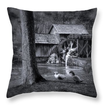Too Cold For The Ducks Throw Pillow