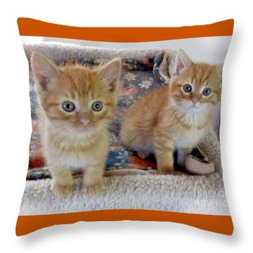 Too Cute Throw Pillow by Rhonda Chase