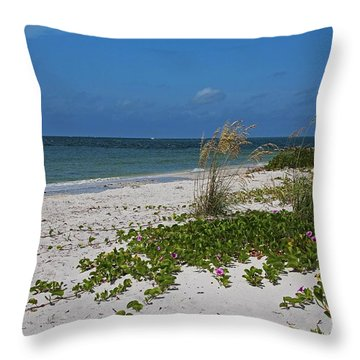 Throw Pillow featuring the photograph Too Much Space Between Us by Michiale Schneider