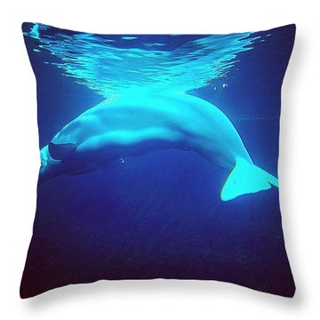 Beautiful Whale Throw Pillow