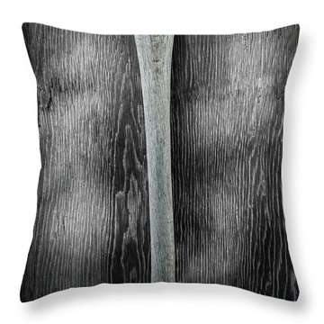 Tools On Wood 13 On Bw Throw Pillow by YoPedro
