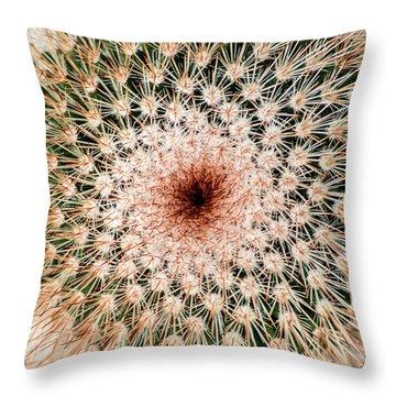 Top Of Cactus Throw Pillow