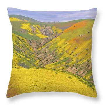 Throw Pillow featuring the photograph Top Of The Temblor Range by Marc Crumpler