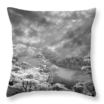 Top Of Tip Toe Mountain, Vinalhaven, Maine Throw Pillow