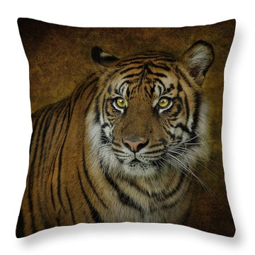 Topaz Tiger  Throw Pillow