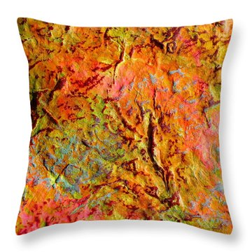 Topographical Map Color Poem Throw Pillow