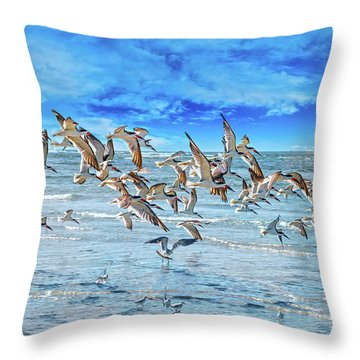 Topsail Skimmers Throw Pillow