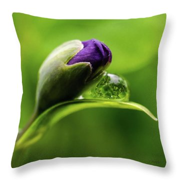 Topsy Turvy World In A Raindrop Throw Pillow