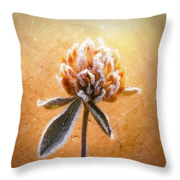 Torcia Throw Pillow by Greg Collins