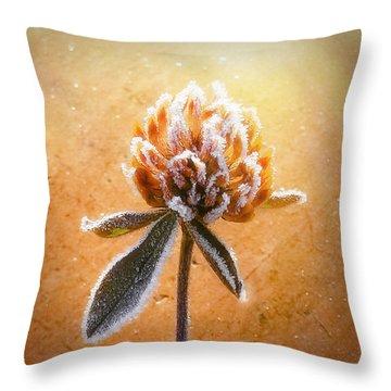 Torcia Throw Pillow