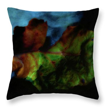 Torn Two Throw Pillow
