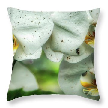 Toronto Orchids Throw Pillow