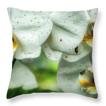 Toronto Orchids Throw Pillow