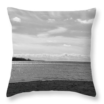 Throw Pillow featuring the photograph Toronto Winter Beach by Valentino Visentini