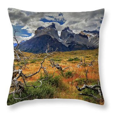 Torres Del Paine 18 Throw Pillow