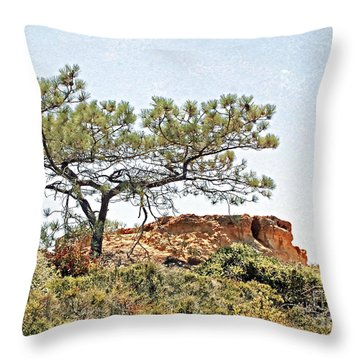 Torrey Pine 1 Throw Pillow