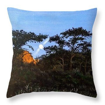 Torrey Pines In The Morning Throw Pillow
