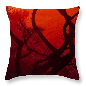 Torrey Pines Glow Throw Pillow
