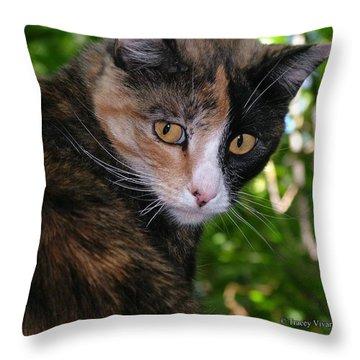 Tortie Throw Pillow