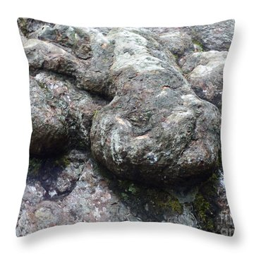 Tortoise In A Tree -2 Throw Pillow