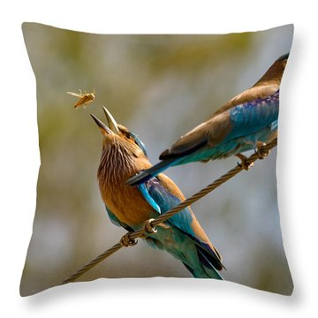 Tossed Meal Throw Pillow