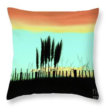 Totitoi Sunset II Throw Pillow by Karen Lewis