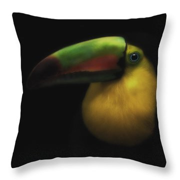 Toucan On Black Throw Pillow