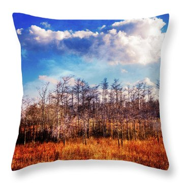 Throw Pillow featuring the photograph Touch Of Autumn In The Glades by Debra and Dave Vanderlaan