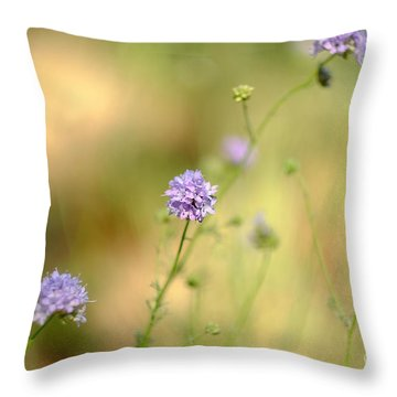 Touch Of Lavender Light Throw Pillow