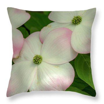Touch Of Pink2 Throw Pillow