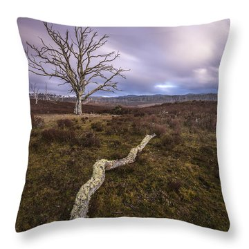 Touch The Depths To Reach The Heights Throw Pillow