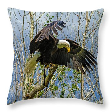 Touchdown Throw Pillow by Alana Thrower
