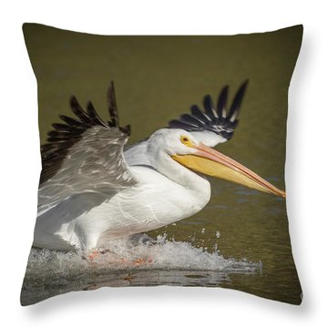 Touchdown Throw Pillow
