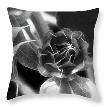 Touched By Light - Throw Pillow