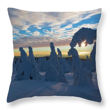 Touched From The Winter Sun Throw Pillow