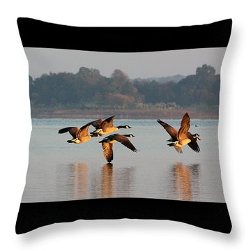 Touching Down At Sunrise Throw Pillow by Sheila Brown