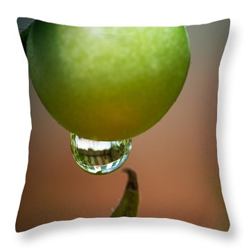 Touching Worlds Throw Pillow