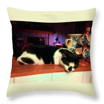 Toulouse Throw Pillow by Vicky Tarcau