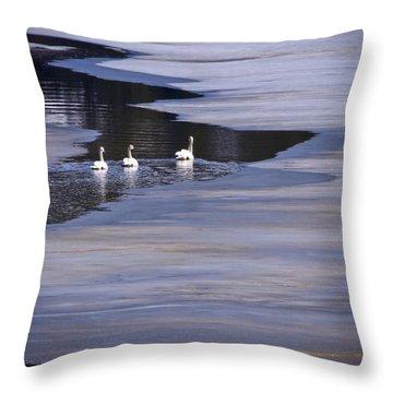 Tourist Swans Throw Pillow